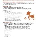 NPO活動ニュース 平成29年11月号